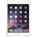 Apple iPad Pro 12,9 Inch (2017) 2e Gen.